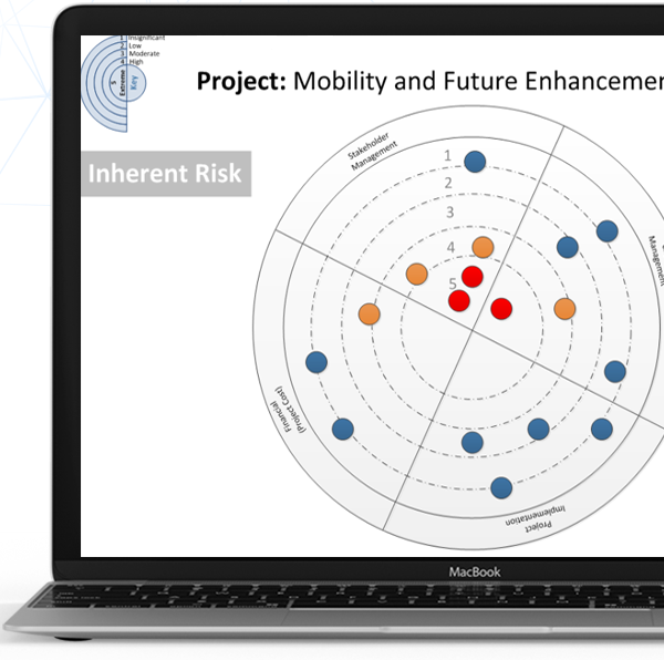 Example of risk planning tool